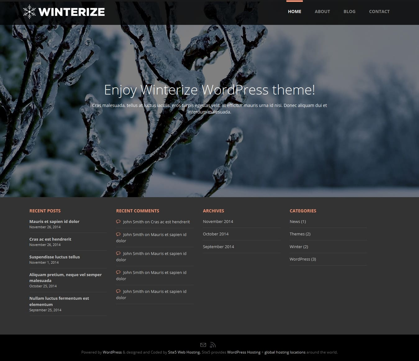 winterize-wordpress-tema